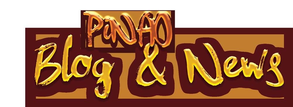 PiNAO Blog and News Headline